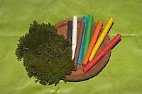 Kinder basteln Frühjahrsblumen aus Knete, Bastelei, Material: Knete in verschiedenen Farben, Moos, Tonteller