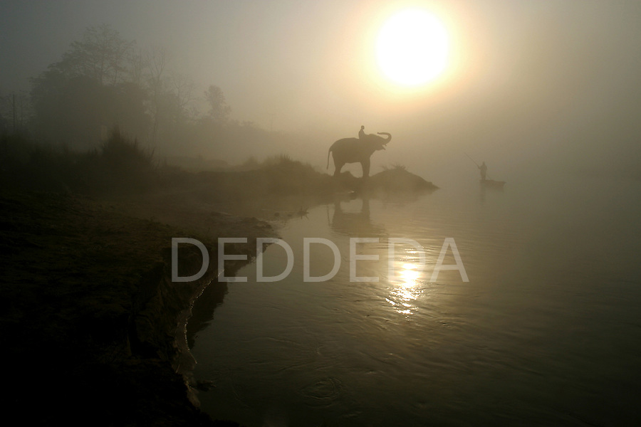 An elephant and a riverboat in the morning fog on the Rapti River, which is the boundary of Chitwan National Park, near the village of Sauraha, Nepal.