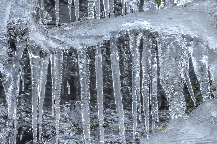 &quot;SERPENTINE&quot;<br />