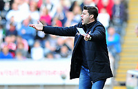 Pictured: Southampton manager Mauricio Pochettino.<br /> Saturday 20 April 2013<br /> Re: Barclay's Premier League, Swansea City FC v Southampton at the Liberty Stadium, south Wales.