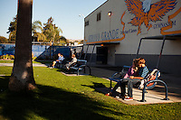 Arroyo Gande,  California, November 1, 2011 - Students sit after class at  Arroyo Grande High School where well-heeled students study alongside working-class students. As a part of an effort to help bridge some of the contrasts in school performance here, the 10,800-student school district of Lucia Mar recently became the first in California to adopt, in four of its schools, the Teacher Advancement Program (TAP) school-reform initiative. The complex model couples professional development, teacher observations keyed to a set of teaching standards and  leadership opportunities for teachers. .