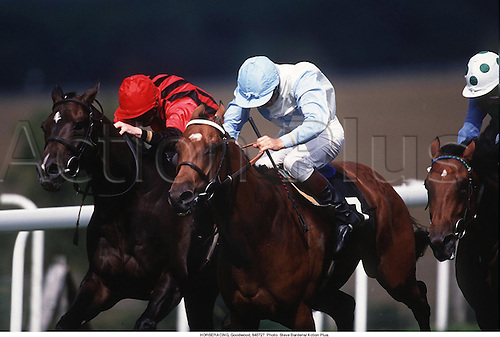 HORSERACING, Goodwood, 940727. Photo: Steve Bardens/ Action Plus....1994.flat .equestrian sports