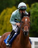 Marble Bar ridden by Dane O'Neil goes down to the start Winner of The M J Church British EBF Novice Stakes (Plus 10) (Div 1), during Afternoon Racing at Salisbury Racecourse on 7th August 2017