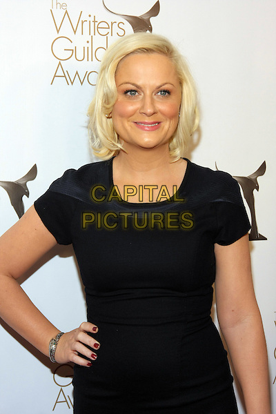 AMY POEHLER .The 2011 Writers Guild Awards held at Renaissance Hollywood Hotel,  Los Angeles, California, USA,.5th February 2011..WGA WGAs arrivals half length dress hand on hip black smiling .CAP/ADM/TB.©Tommaso Boddi/AdMedia/Capital Pictures.