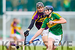 Jason Diggins, Kerry, in action against Jack O'Connor, Wexford, National Hurling League, Division 1B, Round 3, at Austin Stack Park, Tralee, on Sunday.