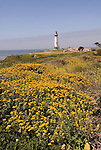 Pigeon Point Lighthouse, major example of  lighthouse architecture, now a Youth Hostel,.San Mateo Coast of California, south of San Francisco.  Photo copyright Lee Foster, 510-549-2202, lee@fostertravel.com, www.fostertravel.com. Photo 478-30948