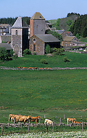 Europe/France/Auvergne/12/Aveyron : Aubrac - Village