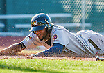 1 September 2014: Tri-City ValleyCats outfielder Jose Solano slides home safely to score the second run of the 3rd inning against the Vermont Lake Monsters at Centennial Field in Burlington, Vermont. The ValleyCats defeated the Lake Monsters 3-2 in NY Penn League action. Mandatory Credit: Ed Wolfstein Photo *** RAW Image File Available ****