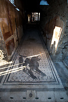 Cave Canem (Beware the dog).<br />