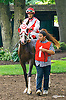 Burning Charm before The Delaware Park Arabian Oaks (grade II) at Delaware Park on 8/6/16