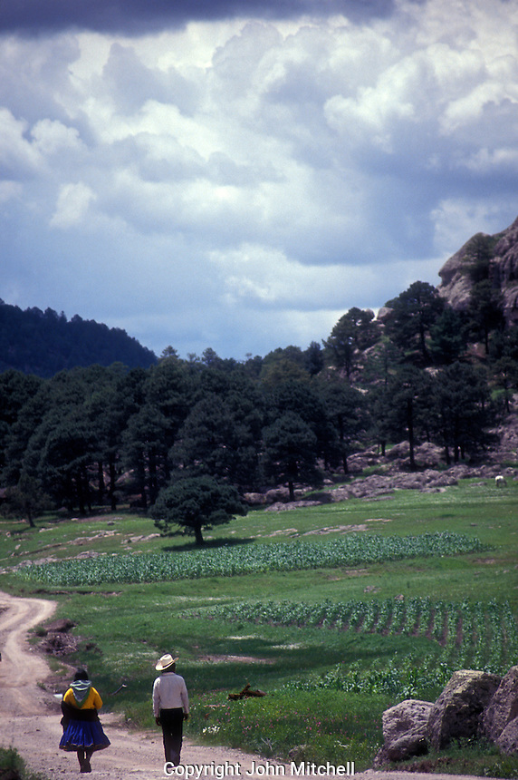 Tarahumara Indian couple walking down a road in a peaceful valley near Creel in the Copper Canyon region, Chihuahua, Mexico