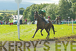 Action from Castleisland Races