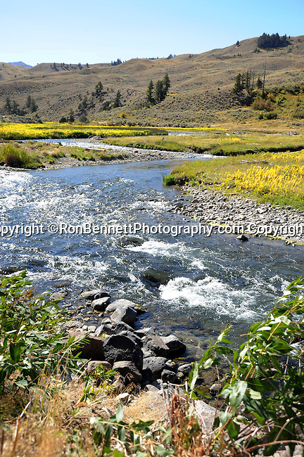 """Montana stream, state located in the Western United States, Rocky Mountains, """"Treasure State,"""" """"Big Sky Country,"""" """"Land of the shining Mountains,"""" """"The Last Best Place,"""" Glacier National Park, Battle of Little Bighorn, Yellowstone National Park, Fine Art Photography by Ron Bennett, Fine Art, Fine Art photo, Art Photography,"""