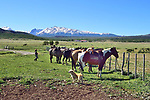 Argentina 2017<br /> Tres Valles