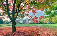 The valley Library and quad with fall color. Oregon State University.