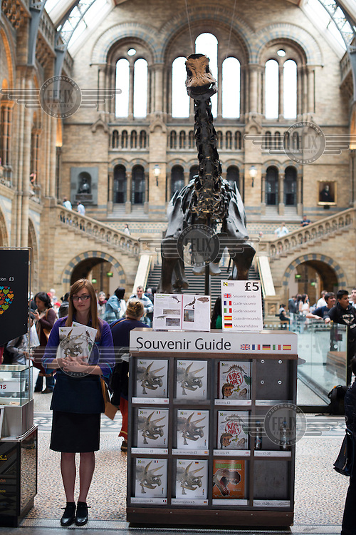 An attendant stands near the fossilised skeleton of a Diplodocus displayed in the Central Hall at Natural History Museum in London.