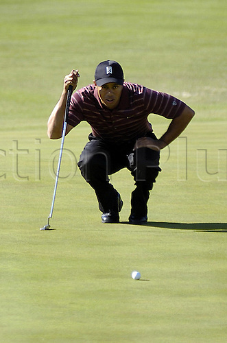 11 December 2005: American golfer Tiger Woods (USA) lining up a putt during the final round of the Target World Challenge at the Sherwood Country Club in Thousand Oaks, California. Photo: Darryl Dennis/actionplus..051211 man men golf player green line