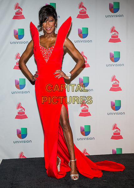 LAS VEGAS, NV - NOVEMBER 21: Natalie Cole at the 14th Annual Latin GRAMMY Awards at the Mandalay Bay Casino Resort on November 21, 2013 in Las Vegas, Nevada, USA.<br /> CAP/MPI/SLP/KAB<br /> &copy;Kabik/Starlitepics/MediaPunch/Capital Pictures