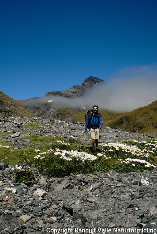 Mann går til fots i fjellterreng i Rabbit Pass, New Zealand.  --- Man in Rabbit Pass, New Zealand.