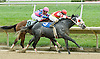 Skagerrak winning at Delaware Park on 9/29/10