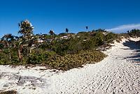 Cuba, Playa Pilar auf Cayo Guillermo, Archipielago de Camagüey, Provinz Ciego de Avila