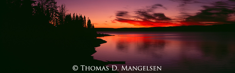 A shoreline in Yellowstone National Park, Wyoming silhouetted at sunset.