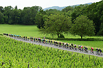 The peloton during Stage 6 of the Criterium du Dauphine 2019, running 229km from Saint-Vulbas - Plaine de l'Ain to Saint-Michel-de-Maurienne, France. 14th June 2019.<br /> Picture: ASO/Alex Broadway | Cyclefile<br /> All photos usage must carry mandatory copyright credit (© Cyclefile | ASO/Alex Broadway)