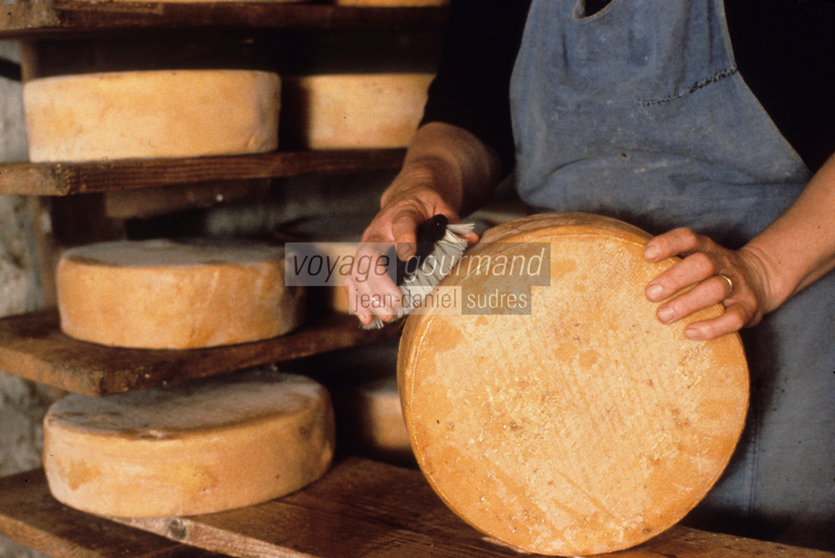 Europe/France/Midi-Pyrénées/09/Ariège/Env. de Castillon-en-Couserans/Ayet: Salage du fromage de Bethmale en cave à la fabrique de fromage de Bethmale<br /> PHOTO D'ARCHIVES // ARCHIVAL IMAGES<br /> FRANCE 1980