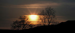 Sunrise, North Yorkshire, trees and landscape - letterbox format.United Kingdom....