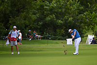 Jon Rahm (ESP) hits his approach shot on 9 during round 1 of the 2019 Charles Schwab Challenge, Colonial Country Club, Ft. Worth, Texas,  USA. 5/23/2019.<br /> Picture: Golffile | Ken Murray<br /> <br /> All photo usage must carry mandatory copyright credit (© Golffile | Ken Murray)