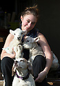 21/04/15<br /> <br /> Melissa Ebbatson with the lambs and Draughtsman.<br /> <br /> Two &lsquo;sheep dogs&rsquo; are helping to pamper three orphaned lambs who think the dogs are their mum.<br /> <br /> The three orphaned  lambs, who wear nappies so they can have the run-of-the-house, like to snuggle up to the dogs and share their bed with them in the kitchen by the stove.<br /> <br /> Piper, an 11-year-old rhodesian ridgeback-cross and Draughtsman, an eight-year-old ex-hunting beagle, take turns looking after the week-old lambs who often try to suckle from their doting canine &lsquo;parents&rsquo;.<br /> <br /> Melissa Ebbatson, 21, said: &ldquo;These three were quite poorly, so we brought them inside so we could look after them better and give them a bit more warmth. We put them in nappies so they don&rsquo;t make a mess in the house.  One of the dogs was having a snooze on his bed and the lambs just jumped in and joined him. And they&rsquo;ve all become inseparable since then.<br /> <br /> &ldquo;The dogs like to clean the lambs&rsquo; faces after they&rsquo;ve had their bottles. And they enjoying romping around the place with them,&rdquo; said Melissa who helps to run Crossgates Farm, with her family near Tideswell in the Derbyshire Peak District.<br /> <br /> &ldquo;They seem to really care about them and go straight to them if they start bleating &ndash; they even come to find us if they think they&rsquo;re hungry.<br /> <br /> &ldquo;We change their nappies at least four-times-a-day - the baby boys even need to wear two!<br /> <br /> &ldquo;They are between seven and eight days old, and we hope to get them living back outside again when they are strong enough in another ten days or so &ndash; that&rsquo;s as long as the dogs let us!<br /> <br /> &ldquo;We&rsquo;re probably all a bit bonkers here but it all seems normal to us&rdquo;, she added.<br /> <br /> All Rights Reserved: F Stop Press Ltd. +44(0)1335 418629   www.fstoppress.com.