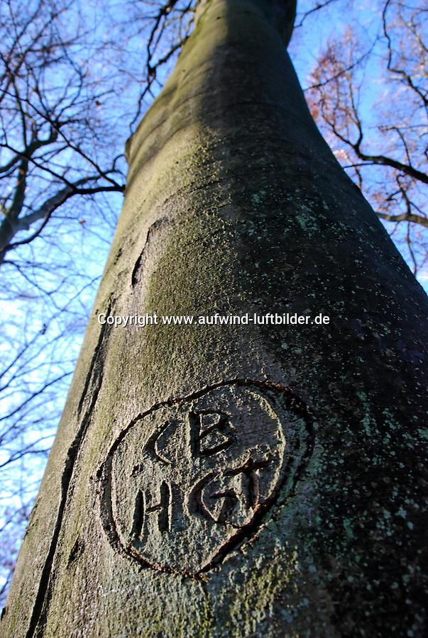 Herz: DEUTSCHLAND, GERMANY, HAMBURG 12.11.2007: Baum, Baumstamm, Beschaedigt, Buche, Laubbaum, Buchstaben, Erinnerung, Herbst, Herz, Holz, Information, Lieben, Liebesbeweis, Natur, Niemand, Pflanzen, Initialen, Buchstabe, CB, HGT, Schnitzen, Symbolik, Zerstoerung, Aufwind-Luftbilder .c o p y r i g h t : A U F W I N D - L U F T B I L D E R . de.G e r t r u d - B a e u m e r - S t i e g  1 0 2,  .2 1 0 3 5  H a m b u r g ,  G e r m a n y.P h o n e  + 4 9  (0) 1 7 1 - 6 8 6 6 0 6 9 .E m a i l      H w e i 1 @ a o l . c o m.w w w . a u f w i n d - l u f t b i l d e r . d e.K o n t o : P o s t b a n k    H a m b u r g .B l z : 2 0 0 1 0 0 2 0  .K o n t o : 5 8 3 6 5 7 2 0 9.C  o p y r i g h t   n u r   f u e r   j o u r n a l i s t i s c h  Z w e c k e, keine  P e r s o e n  l i c h ke i t s r e c h t e   v o r  h a n d e n,  V e r o e f f e n t l i c h u n g  n u r    m i t  H o n o r a  n a c h  MFM, N a m e n s n e n n u n g und B e l e g e x e m p l a r !...