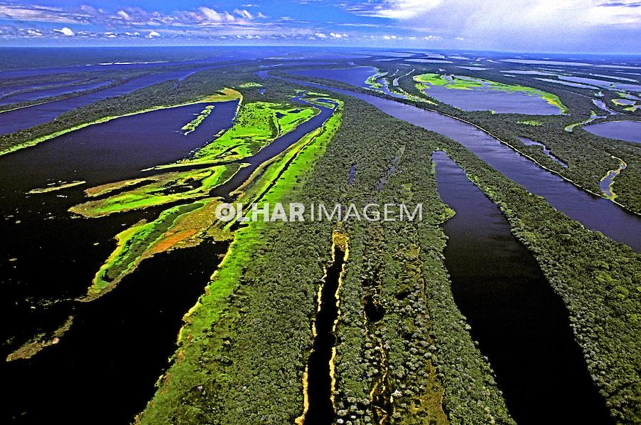 Aérea do Arquipélago de Anavilhanas. Amazonas. Foto de Ricardo Azoury.