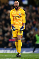 30th October 2019; Stamford Bridge, London, England; English Football League Cup, Carabao Cup, Chelsea Football Club versus Manchester United; Wilfredo Caballero of Chelsea celebrates the goal by Michy Batshuayi for 1-1 in the 60th minute - Strictly Editorial Use Only. No use with unauthorized audio, video, data, fixture lists, club/league logos or 'live' services. Online in-match use limited to 120 images, no video emulation. No use in betting, games or single club/league/player publications