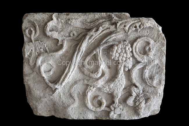 Stone relief of a pheasant eating grapes from a vine, 4th century AD, originally from the ancient Greek Illyrian site of Apollonia in Fier, from the National Museum of Medieval Art, Korce, Albania. Picture by Manuel Cohen