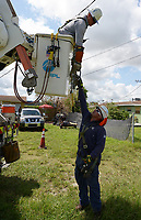 FPL lineman Gustavo Escobar, left, takes a tool from Antony Latour, right while repairing a broken power line in South Miami-Dade county after Hurricane Irma Sept 12, 2017.  (Photo by David Adame/For FPL)