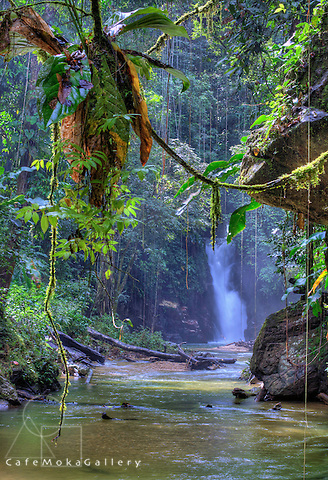 Paria river and waterfall north coast Trinidad