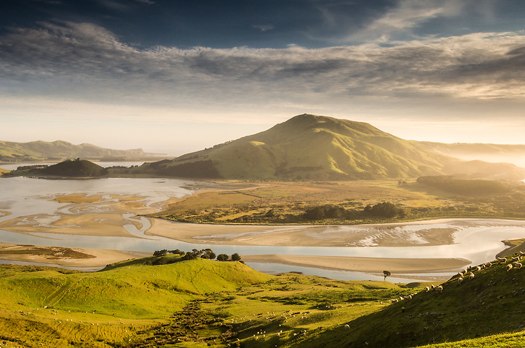 Early morning on Otago Peninsula looking across to Hoopers Inlet and Otago Harbour. Otago, South Island, New Zealand - stock photo, canvas, fine art print