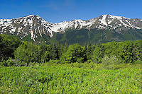 Coast Mountains<br /> Mt. Edziza Provincial Park<br /> British Columbia<br /> Canada