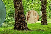France, Indre-et-Loire (37), Amboise, Jardin et Château du Clos Lucé, analogie du vivant, étude des muscles et structure des troncs de platanes