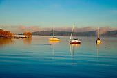 Yachts moored in Waipahihi Bay, Lake Taupo, Central North Island, New Zealand