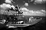 Bill Hickock drives his airboat with Honky dog on the front watching the Glades go by.  The Florida Everglades are a disappearing world. Overpopulation, the sugar and cattle industry, mismanagement of the land, droughts and bush fires are just a few of the problems the Florida Everglades are facing. Here Glen Wilsey driving his airboat. According to Glen the best thing about being a tour guide in the everglades is driving the airboats. Riding an airboat is fun but driving an airboat is an awesome feeling.