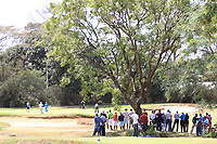 General view 7th green during the third round of the of the Barclays Kenya Open played at Muthaiga Golf Club, Nairobi,  23-26 March 2017 (Picture Credit / Phil Inglis) 25/03/2017<br /> Picture: Golffile | Phil Inglis<br /> <br /> <br /> All photo usage must carry mandatory copyright credit (© Golffile | Phil Inglis)