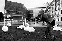 Switzerland. Canton Ticino. Lugano. A muslim tourist woman from Kuwait gives grass to a group of swans in front of the LAC Lugano Arte e Cultura on a rainy gray day. LAC Lugano Arte e Cultura is a new cultural centre dedicated to the visual arts, music and the performing arts. 6.11.2016 © 2016 Didier Ruef