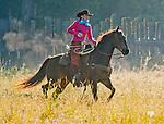 Cowboy Photography Workshop   Erickson Cattle Co. ..Andra Erickson.. Photo by Al Golub/Golub Photography