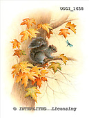 GIORDANO, REALISTIC ANIMALS, REALISTISCHE TIERE, ANIMALES REALISTICOS, paintings+++++,USGI1658,#A#