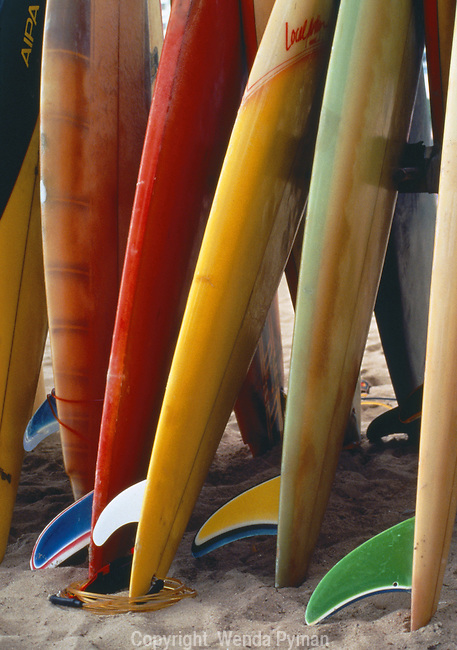 Colorful surfboards await some action on the water.