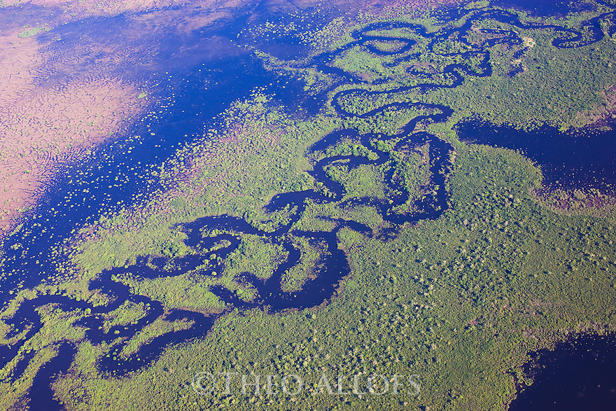 Bolivia, Beni Department, aerial view of a small river winding through swamped forest