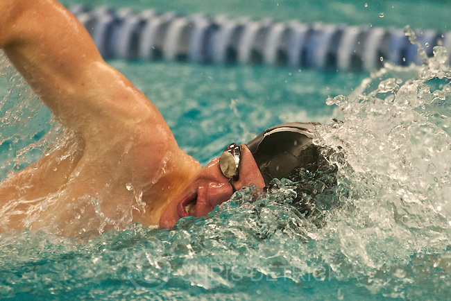 Chris Detrick  |  The Salt Lake Tribune.Mitchell Hutchings, of Pine View High School, competes in the 200 yard freestyle during the Utah High School State 3A Championships Friday February 8, 2013.