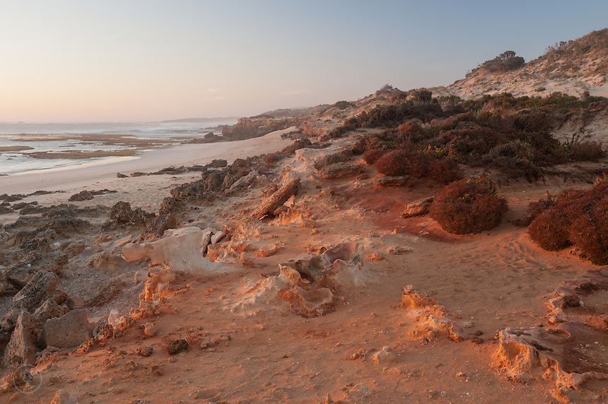 At sunset, the red light of the sun catches the red of the iron ore that tinges the sand orange at Little Dip Conservation Park on South Australia's wild Limestone Coast.